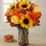 New Year Flower Delivery in Colorado Springs, CO